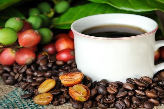 cà phê hawaii kona